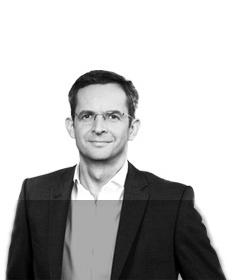 Prof Dr Carsten Werner Old Leibniz Institute For Polymer